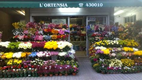 fiori e piante bologna fioraio bologna fiori e piante fiorista l ortensia