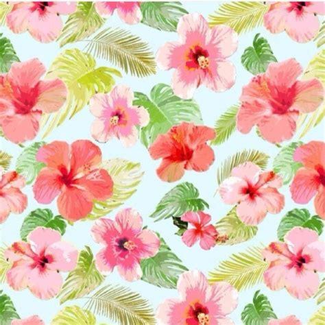 imágenes de flores wallpapers flowers fondos wallpapers hawaianas fondo de pantalla