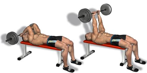 how to get my bench press up fast best triceps workouts and exercises for muscle building