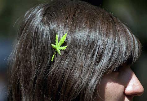 High Times Hair Detox by How To Pass A Hair Follicle Test 183 High Times