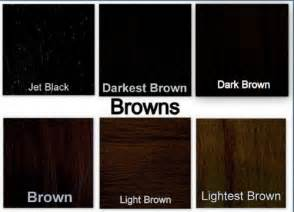 shades of black color shades of black hair color chart all hair style for womens