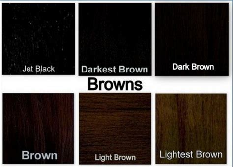 shades of black shades of black hair color chart all hair style for womens