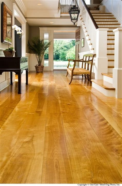 yellow birch modern wood flooring chicago by