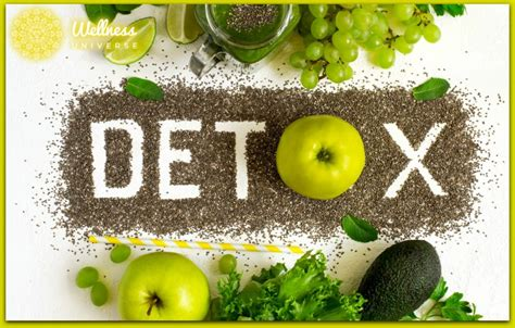 Detox Diet Foggy Blurry by 6 Tips For A Healthy Detox Program The Wellness Universe