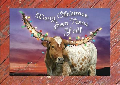 merry christmas  texas happy hanukkah
