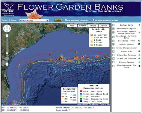 flower garden banks gulf of mexico flower garden banks pelagics