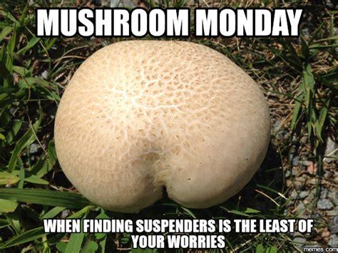 Mushroom Meme - monday meme mushroom minion minus suspenders edition