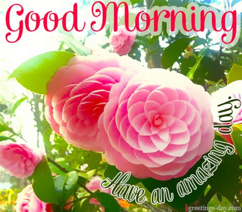 good morning greetings flashgood morning e cards good good morning greetings pics