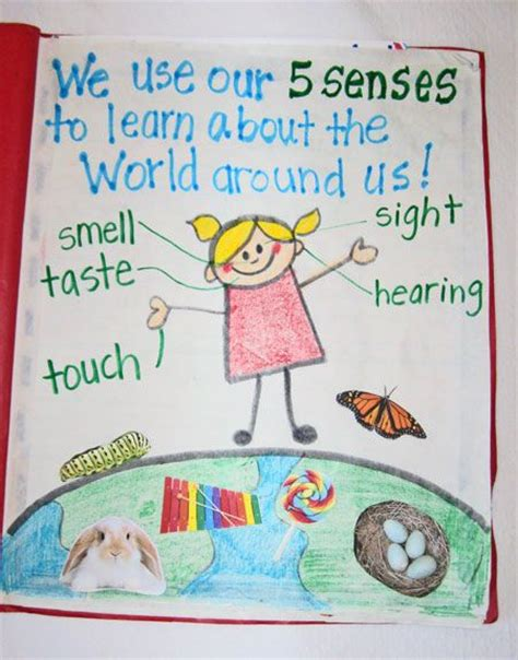 five books 226 best science anchor charts images on