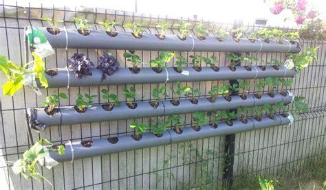 Potager Hors Sol Palette by Jardinage Hors Sol Le Concombre Masqu 233 Jardinier