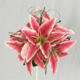 Silk Bouquets Stargazer Lily Bridal Posy   Wedding Ideas