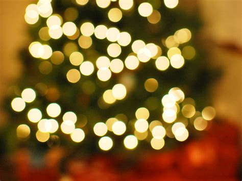 christmas tree bokeh christmas lights decoration