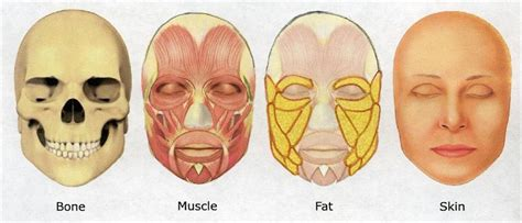 i have a fat face can you show me some sew in hair stails facing face fat facts