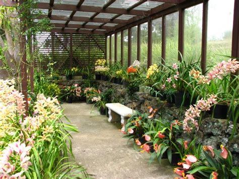 kula botanical gardens kula botanical garden hawaii hawaii