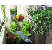 Art And Interior SMALL SPACES Balcony Garden