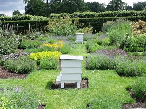 Bee Gardens by Houghton Herb Garden Bee Hives The Herb Garden Of