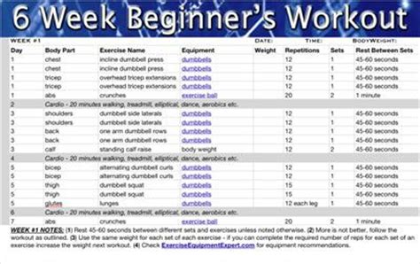 6 week beginner s workout routine strength