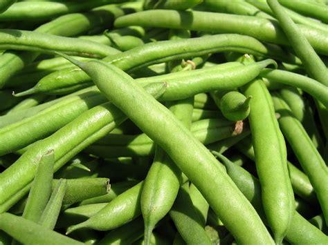 the elizavegan page bihari green beans and spinach masala