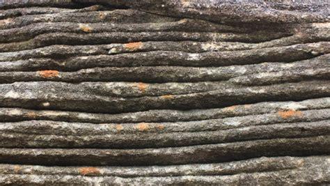 flaser bedding mudcracks or desiccation cracks or mud cracks are