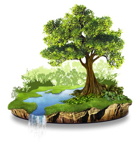 Conservation Of Nature Essay by Conservation Of Nature Essay Essay Importance Nature Conservation