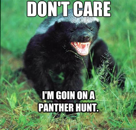 Badger Memes - honey badger memes quickmeme