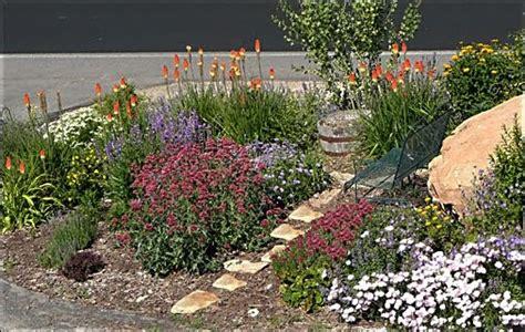 High Altitude Gardening Long Blooming Perennials Rock Garden Plants Sun