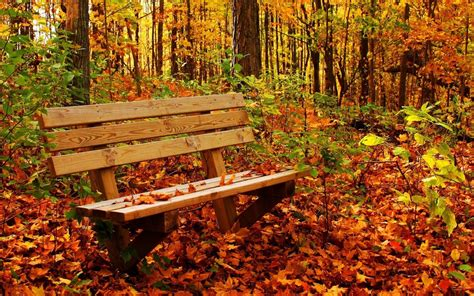 happy garden fall river autumn pictures for desktop backgrounds wallpaper cave