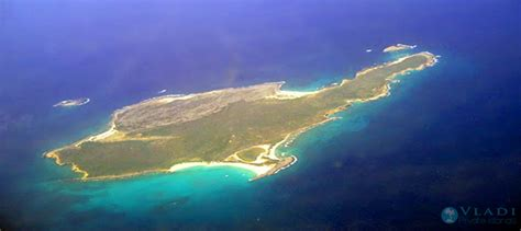 puppies island island for sale anguilla excess caribbean