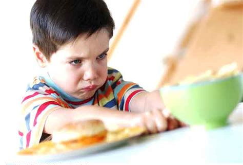 no more fussy toddlers great meals that all toddlers will books why should we tolerate fussy eaters