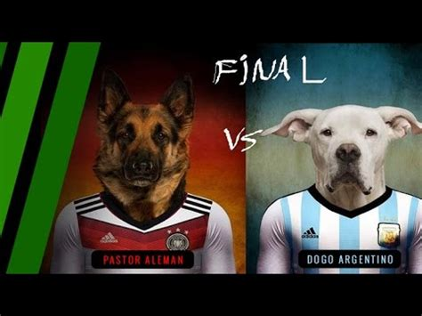 Mundo Memes - los mejores memes final copa mundo brasil 2014 argentina