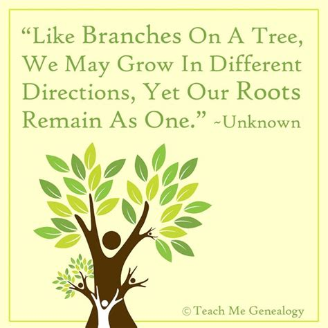 are you a branch on our family tree us history like branches on a tree we may grow in different