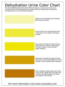what color is healthy urine urine color chart w health