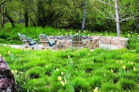 greenlee nurseries master of ornamental grasses garden