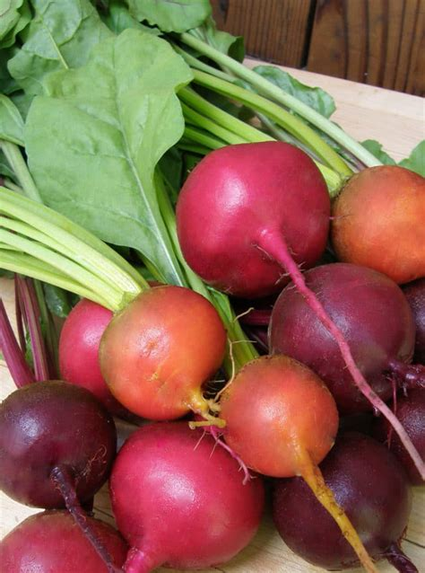 zone 9 vegetables 11 vegetables to plant in march zone 9 brown thumb