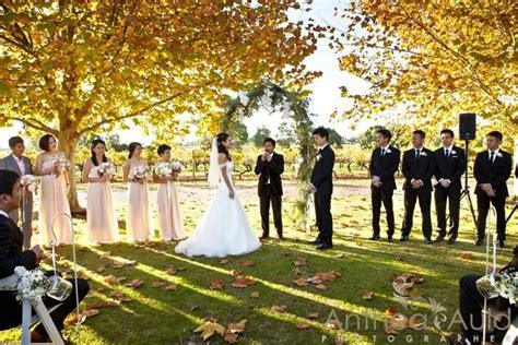 Sandalford Wines   Wedding Venues Guildford   Easy Weddings
