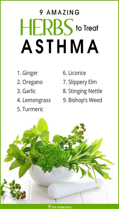 ideas  asthma  pinterest air cleaning