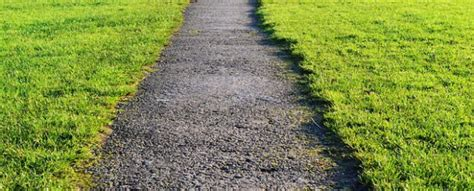 Wann Letztes Mal Rasen Mähen by Richtig Rasen M 228 Hen Ein Guide F 252 R Einsteiger Garden