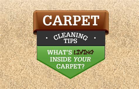 upholstery cleaning norwalk ct carpet norwalk ct meze blog