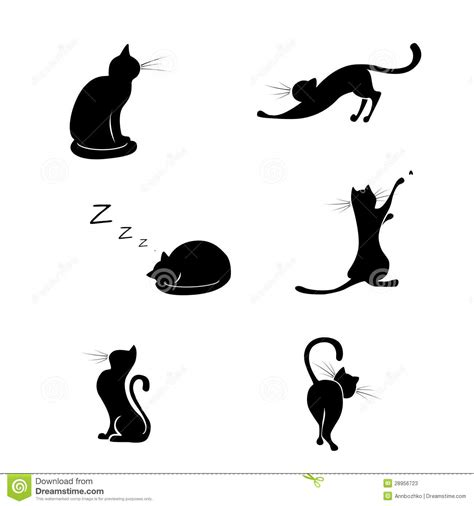 black cat silhouette collections stock photos image
