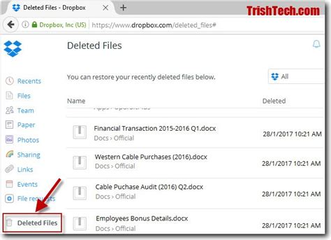 dropbox deleted files how to recover ransomware encrypted files from dropbox