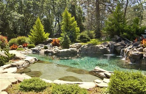 Landscape Design Woodland Ca Cottage Landscape And Yard With Woodland Setting