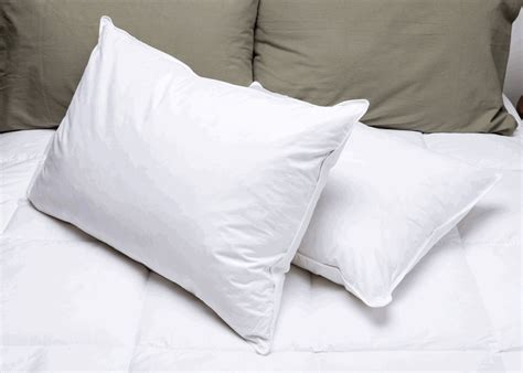 Hotel Pillow by Pillowtex Hotel Feather And Hotel Pillow Order Today
