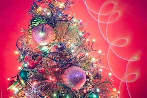 free christmas tree 13 stock photo freeimages com