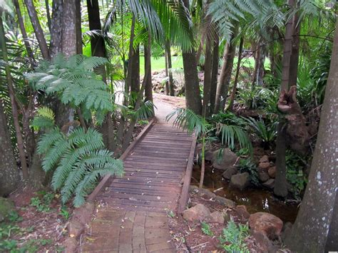 Mt Tamborine Botanical Gardens Mount Tamborine Botanical Gardens Tamborine Mountain Botanic Gardens Garden Locations