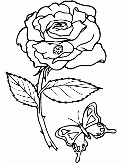 Flowers Coloring Pages Coloringpages1001 Com Flower Coloring Pages Free