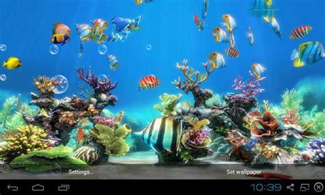 fish live wallpaper apk free koi fish live wallpaper free apk for android getjar