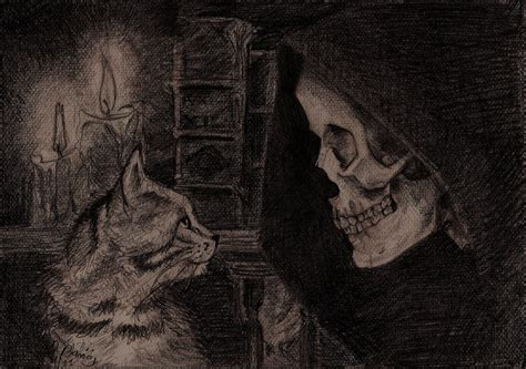 libro grim death and bill death bill images death and a cat hd wallpaper and background photos 36776542
