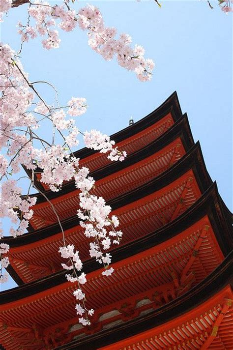 imagenes red japonesa red japan 5 japon belleza japonesa y fotos incre 237 bles