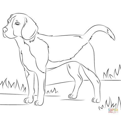 police dog coloring pages coloring page police dog