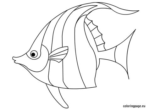Fish  Coloring Page sketch template